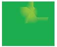 cams client hashi logo